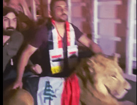 iraqi protesters lion vs dogs