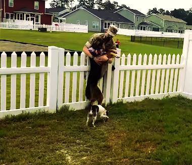 german shepherd meets owner marines
